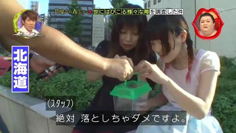 北海道 ゴキブリ 平気 感動 (51)