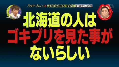 北海道 ゴキブリ 平気 感動 (1)