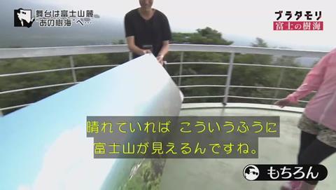 ブラタモリ 富士の樹海(青木ヶ原樹海 )(77)