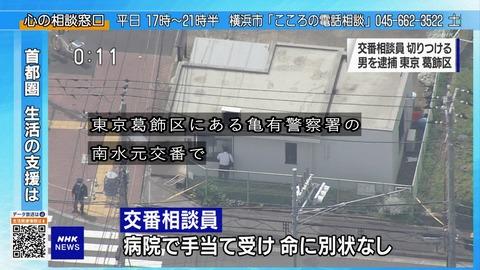 東京都葛飾区にある亀有警察署の南水元交番で