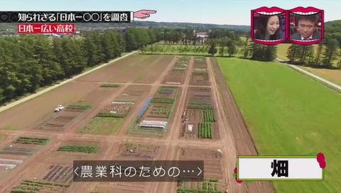 「日本一広い高校」北海道 標茶高校 畑