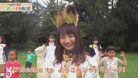 けものフレンズ再放送「おえかき動物図鑑」