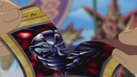ゴキボールのカードを破る羽蛾