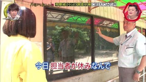 宇都宮動物園 担当者が休みだとワニは見られない