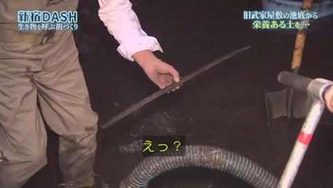 鉄腕DASH すっぽんと刀 (912)