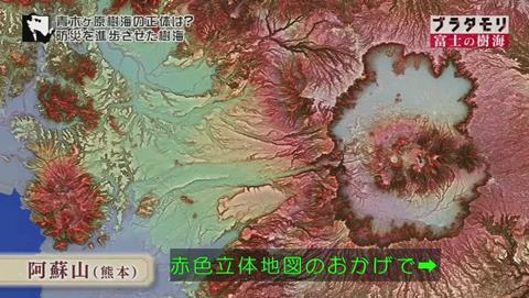 ブラタモリ 富士の樹海(青木ヶ原樹海 )(2537)