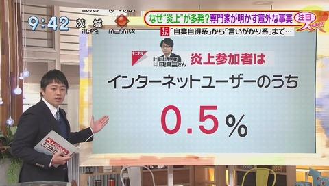 炎上参加者 インターネットユーザのうち 0.5%