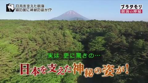 ブラタモリ 富士の樹海 第二回 風穴