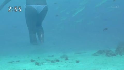 NHK『地球でイチバンの海の楽園と神秘の島 海と島編 ~セーシェル諸島・ヤップ島~』画像