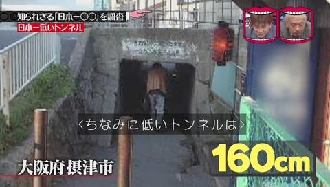 「日本一低いトンネル」 大阪府 摂津市