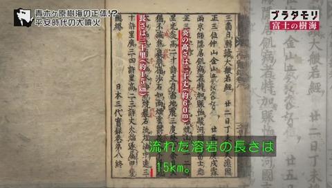 ブラタモリ 富士の樹海(青木ヶ原樹海 )(1549)