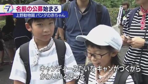 上野動物園 ジャイアントパンダの赤ちゃん キャンキャン