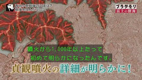 ブラタモリ 富士の樹海(青木ヶ原樹海 )(1879)