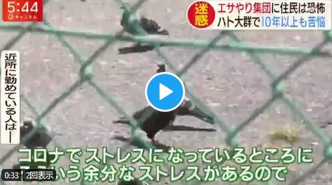 スーパーJチャンネル 放送トラブル
