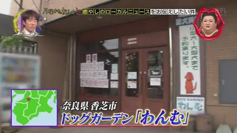 月曜から夜ふかし 奈良県 香芝市 ドッグガーデン わんむ