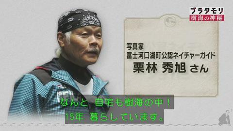 ブラタモリ 富士の樹海 第二回 ネイチャーガイド栗林さん