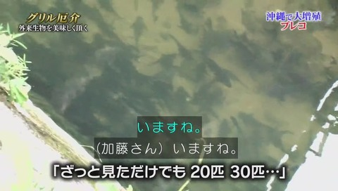 静岡大学 保全生態学 加藤英明 講師