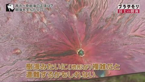 ブラタモリ 富士の樹海(青木ヶ原樹海 )(1814)