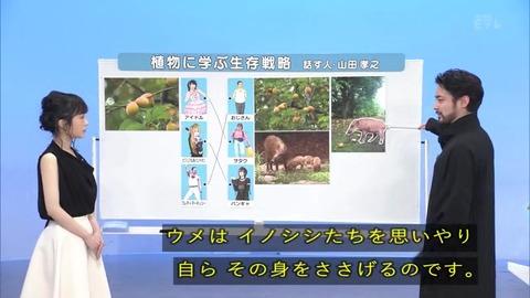 「植物に学ぶ生存戦略2」ウメの生存戦略 イノシシ