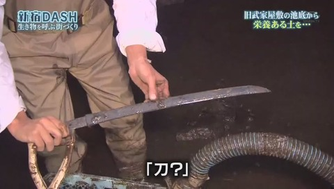 鉄腕DASH すっぽんと刀 (914)