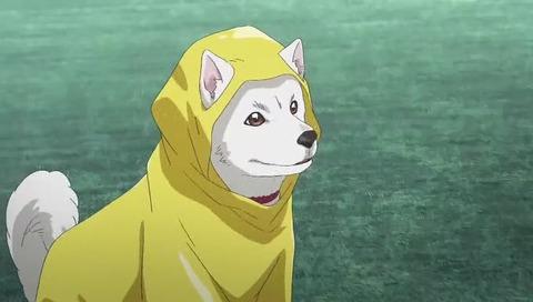 映画「君の名は。」地上波2回目 ソフトバンク社 おとうさん犬「天気の子コラボ」CM アニメ版