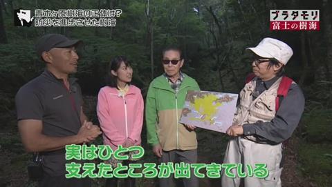 ブラタモリ 富士の樹海(青木ヶ原樹海 )(2517)