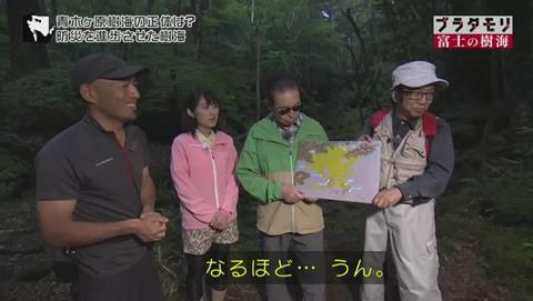 ブラタモリ 富士の樹海(青木ヶ原樹海 )(2569)