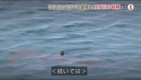 鉄腕DASH サメが出現