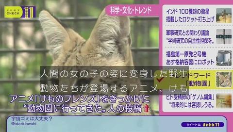 NHKニュースチェック11 けものフレンズ デビュー