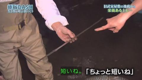 鉄腕DASH すっぽんと刀 (921)