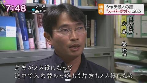 東海大学 大泉宏 教授
