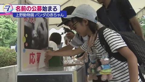 上野動物園 ジャイアントパンダの赤ちゃん 名前募集