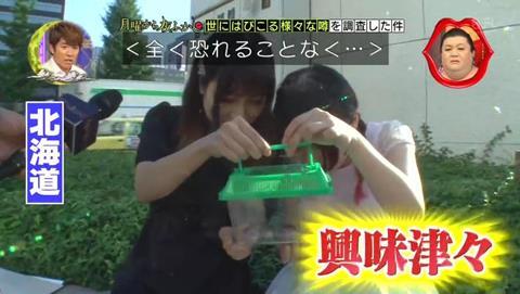 北海道 ゴキブリ 平気 感動 (56)