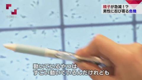 NHK「クローズアップ現代プラス」精子