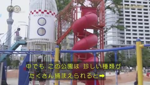 NHKドキュメント72 ポケモンGO 錦糸公園 (1969)