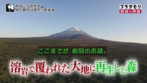 ブラタモリ 富士の樹海 第二回 青木ヶ原の正体