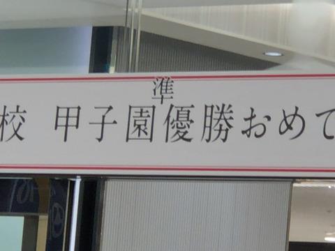 2019年 夏の甲子園 星稜高校 「準」優勝