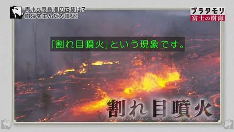 ブラタモリ 富士の樹海(青木ヶ原樹海 )割れ目噴火