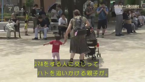 NHKドキュメント72 ポケモンGO 錦糸公園 (1991)