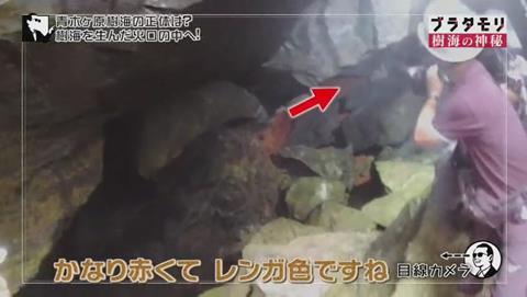 ブラタモリ 富士の樹海 第二回