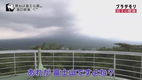 ブラタモリ 富士の樹海(青木ヶ原樹海 )(60)