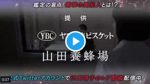 科捜研の女 「ルヴァン」コラボCM 動画