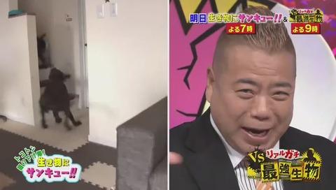 ドラマ「監獄のお姫様」ラスト