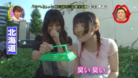 北海道 ゴキブリ 平気 感動 (63)