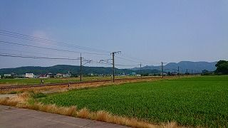 DSC_4199