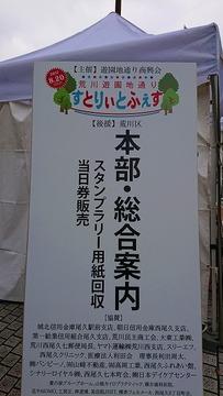 DSC_4519