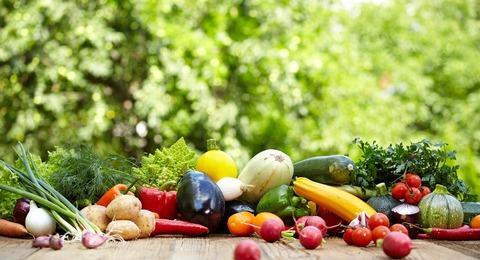 0608オーガニック野菜
