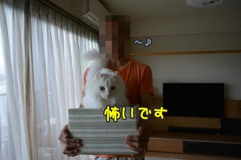 DSC_0026(1)