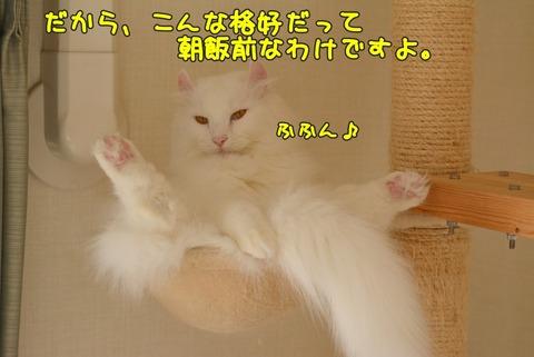 DSC_2139