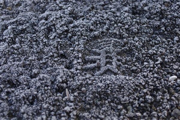 185日目 富士宮-伊豆 ひとまずここまで